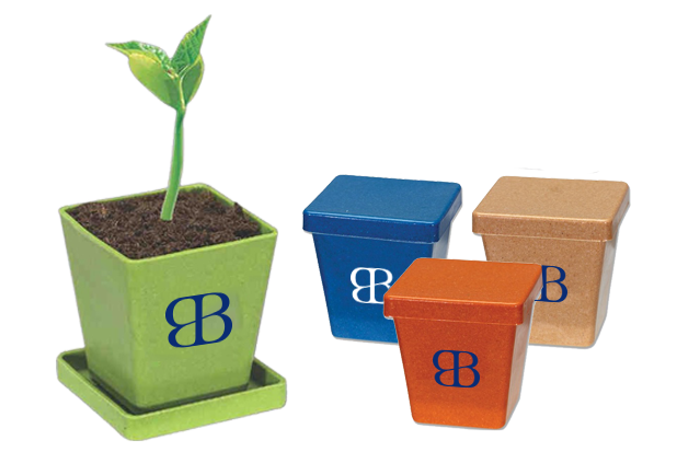 Employee Gift Ideas_EcoFriendly_Planter
